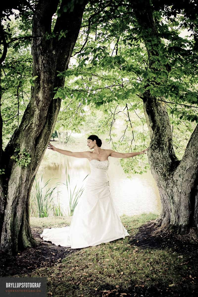 Weddings Ideas to Go Green